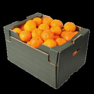 Hel låda Clementiner